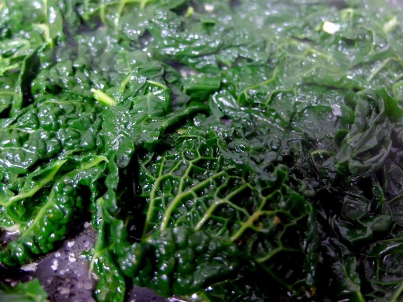 Sauté the cabbage