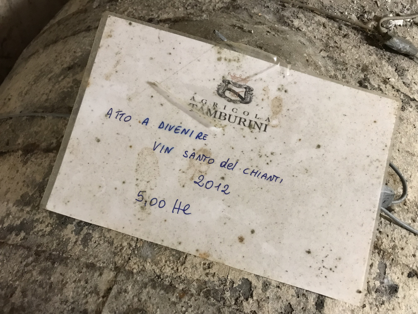 Nelle Cantine Tamburini si fa il Vin Santo. Le botti sono ancora quelle del nonno di Emanuela