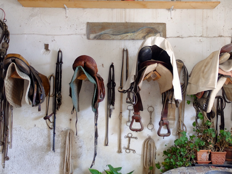 The saddles Carlo Romiti uses everyday